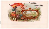 Havana Conchas Inner Box Art