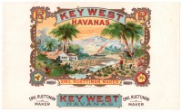 Key West Havanas Inner Box Art